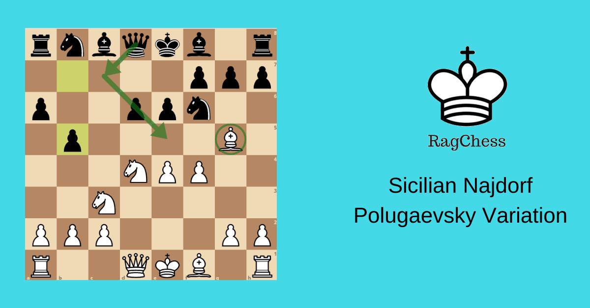 Sicilian Najdorf Polugaevsky Variation