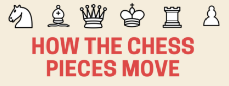 how the chess pieces move infographic