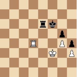 drawn endgame with rooks