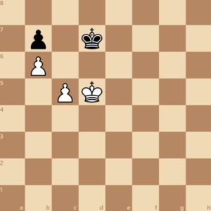 triangulation chess endgame