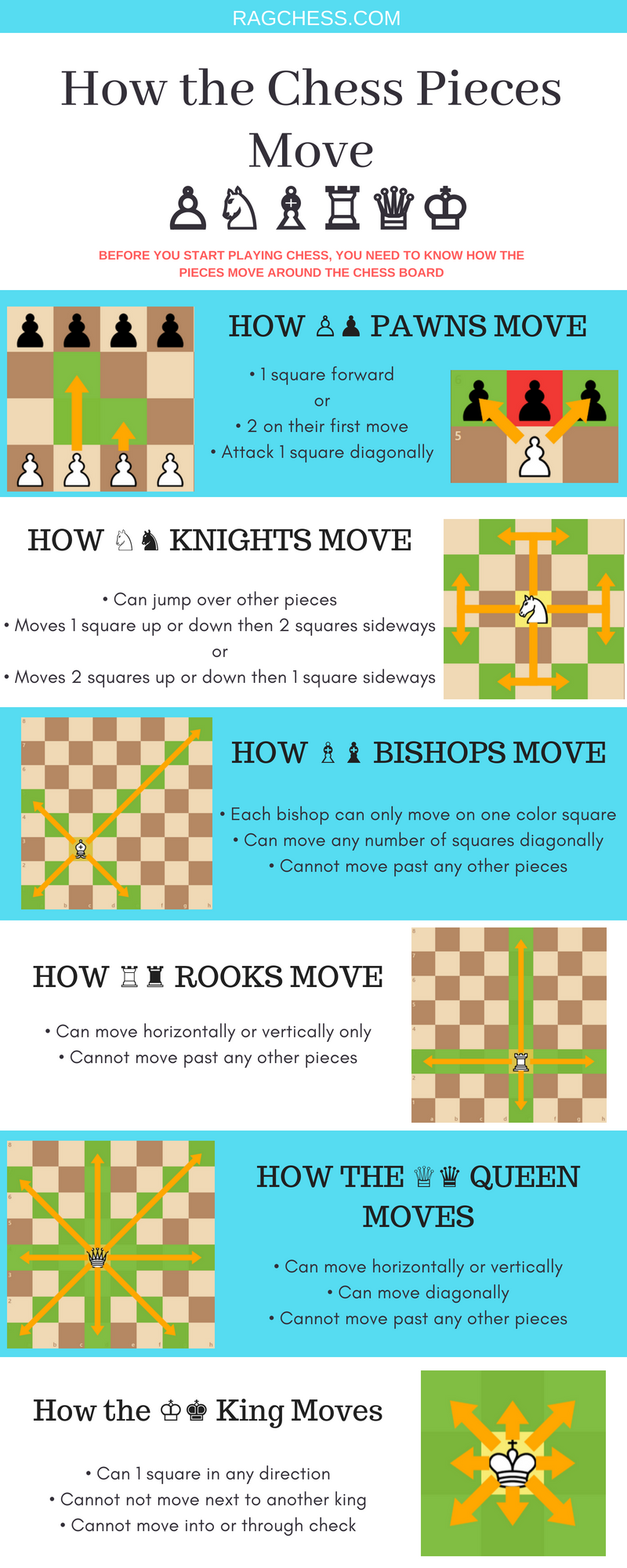 graphic relating to Printable Chess Rules identified as Chess Piece Actions a Definitive Advisor (With Cheat Sheets)
